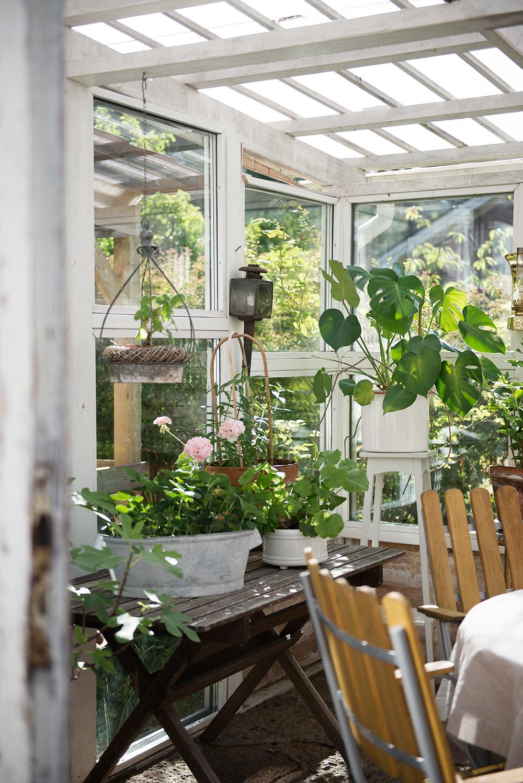 växthus_återbruk